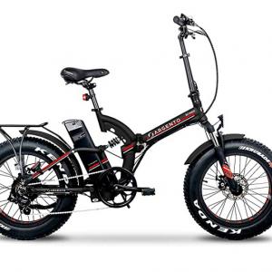 Bici elettrica pieghevole - Argento Bike Bi Max Foldable Fat