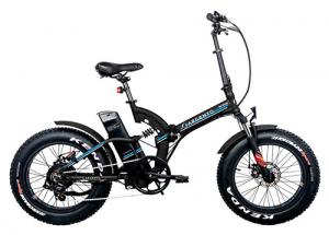 Bici elettrica pieghevole Argento Bimax